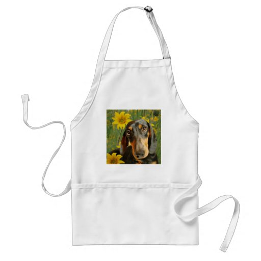 Cute Dachshund (Brown Short Haired) in Sunflowers Aprons