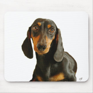 Cute Dachshund ( Miniature Brown Short Haired ) Mouse Pad
