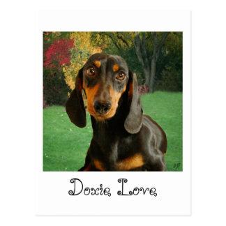 Cute Dachshund (Miniature Brown Short Haired) Postcard