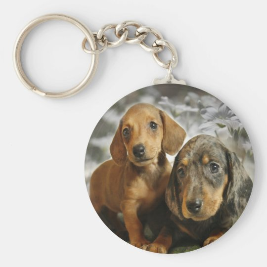 Cute Dachshund Puppies (Brown/Black) Keychain
