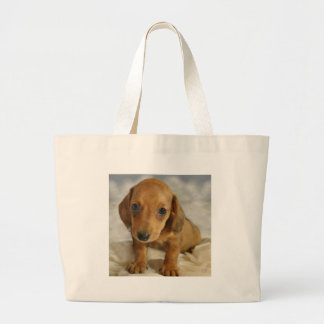 Cute Dachshund Puppy Cream Brown on Nappies Bags