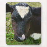 Cute Dairy Cow Calf Mouse Pad