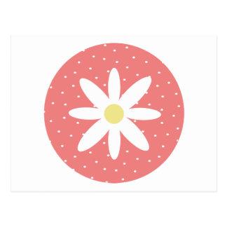 Cute Daisy Postcard