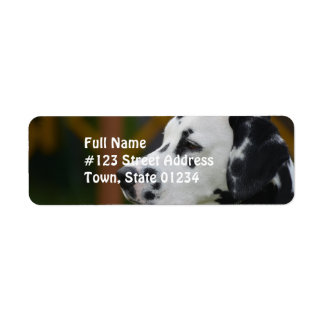 Cute Dalmatian Puppy Custom Return Address Label