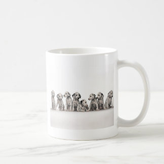 cute dalmation puppies pupy pup pups dog dogs coffee mug