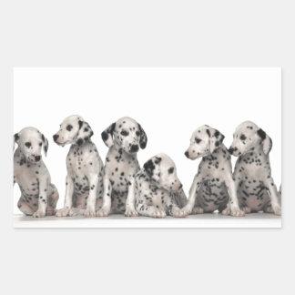 cute dalmation puppies pupy pup pups dog dogs rectangular sticker