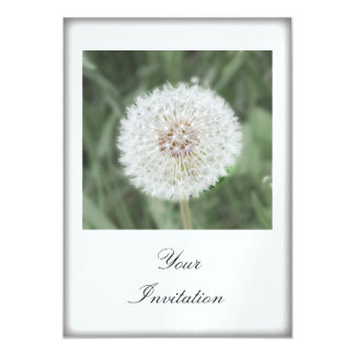 Cute Dandelion Seed Head Card