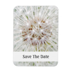 Cute Dandelion Seed Head Magnet at Zazzle