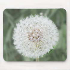 Cute Dandelion Seed Head Mouse Pad at Zazzle