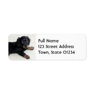 Cute Daschund  Mailing Label