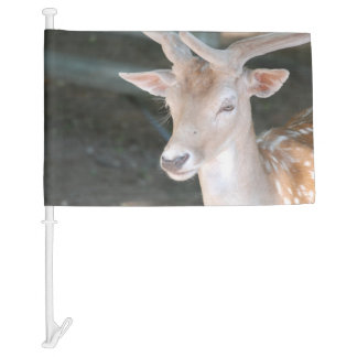 Cute Deer Car Flag