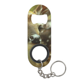 deer bottle openers deer beer bottle opener designs zazzle. Black Bedroom Furniture Sets. Home Design Ideas