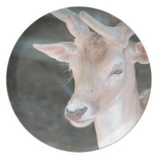 Cute Deer Plate