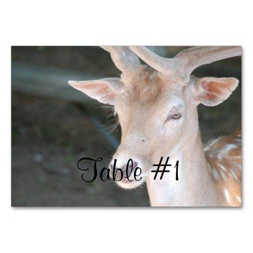Cute Deer Table Card