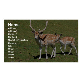 Cute Deer With His Mama In The Green Meadow Business Card Templates