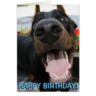 Cute doberman birthday card