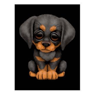 Cute Doberman Pinscher Puppy Dog on Black Postcard