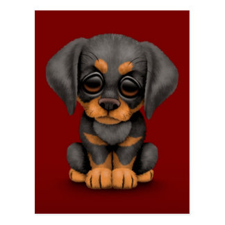 Cute Doberman Pinscher Puppy Dog on Red Postcard
