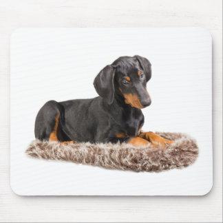 cute doberman pinscher puppy mouse pad