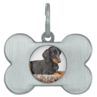 cute doberman pinscher puppy pet ID tag