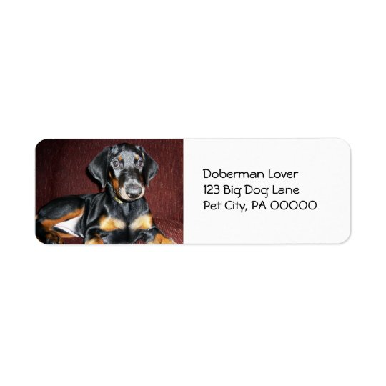 Cute Doberman Pinscher Puppy Return Address Labels