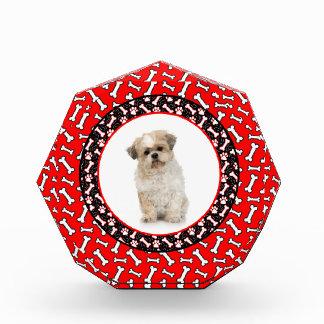 Cute Dog Award Add Your Photo