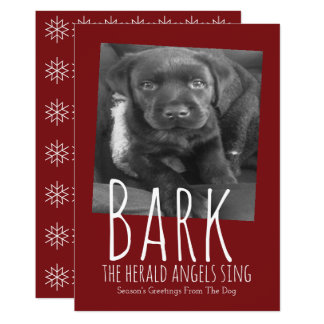 Cute Dog Bark The Herald Angels Sing Christmas Card