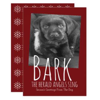 Cute Dog Bark The Herald Angels Sing Christmas Card