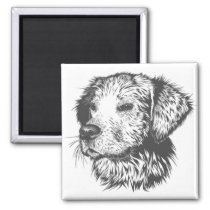 Cute Dog Black and White Magnet