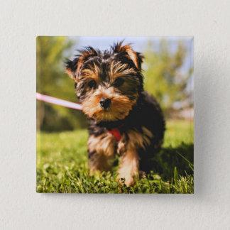 Cute Dog button 5