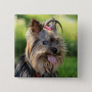 Cute Dog button 7