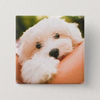 Cute Dog button 9