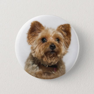 Cute Dog Button Badge