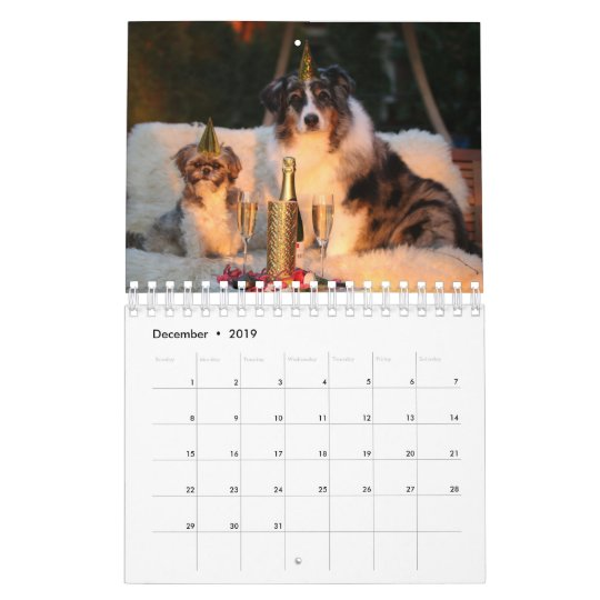 Cute Dog Calendar Customise With Your Own Photos Zazzle Com