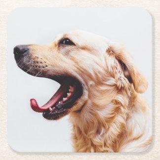 Cute Dog coasters 1