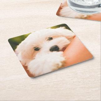 Cute Dog coasters 2