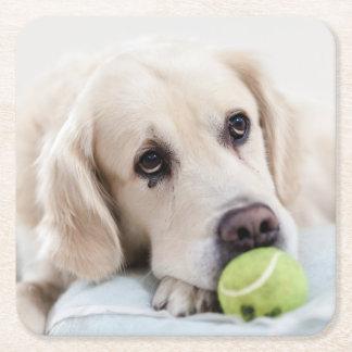 Cute Dog coasters 7