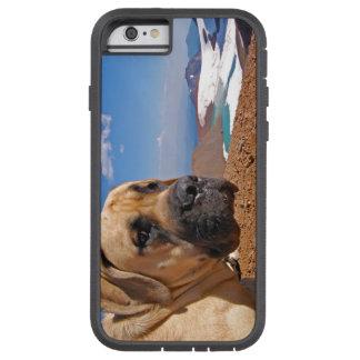 Cute Dog Iphone 6 Case [Tough]