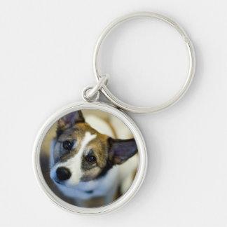 Cute Dog Key Ring Key Chain