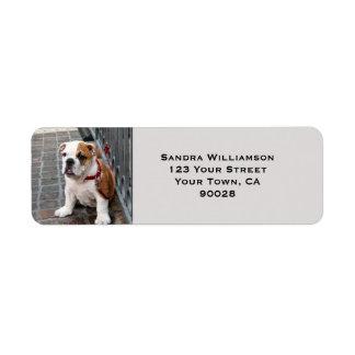 Cute dog label