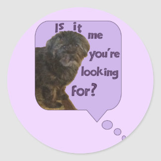 Cute Dog looking for You Classic Round Sticker