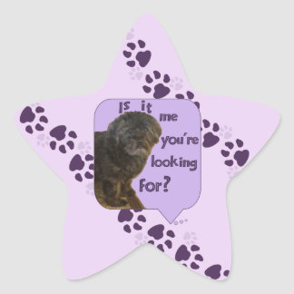 Cute Dog looking for You Star Sticker