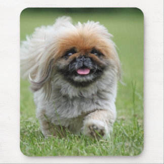 Cute dog mouse pad