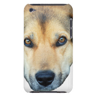 Cute dog on any color background Case-Mate iPod touch case