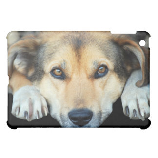 Cute dog on any color background iPad mini cover