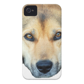Cute dog on any color background iPhone 4 Case-Mate case