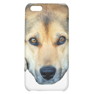 Cute dog on any color background iPhone 5C case
