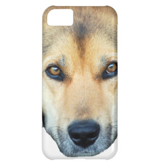 Cute dog on any color background iPhone 5C cover