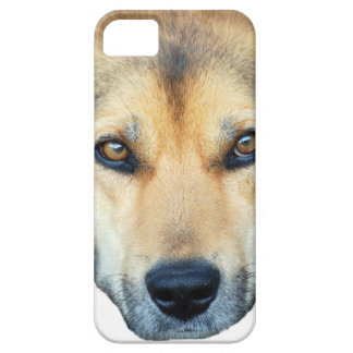 Cute dog on any color background iPhone SE/5/5s case