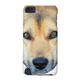 Cute dog on any color background iPod touch (5th generation) cover